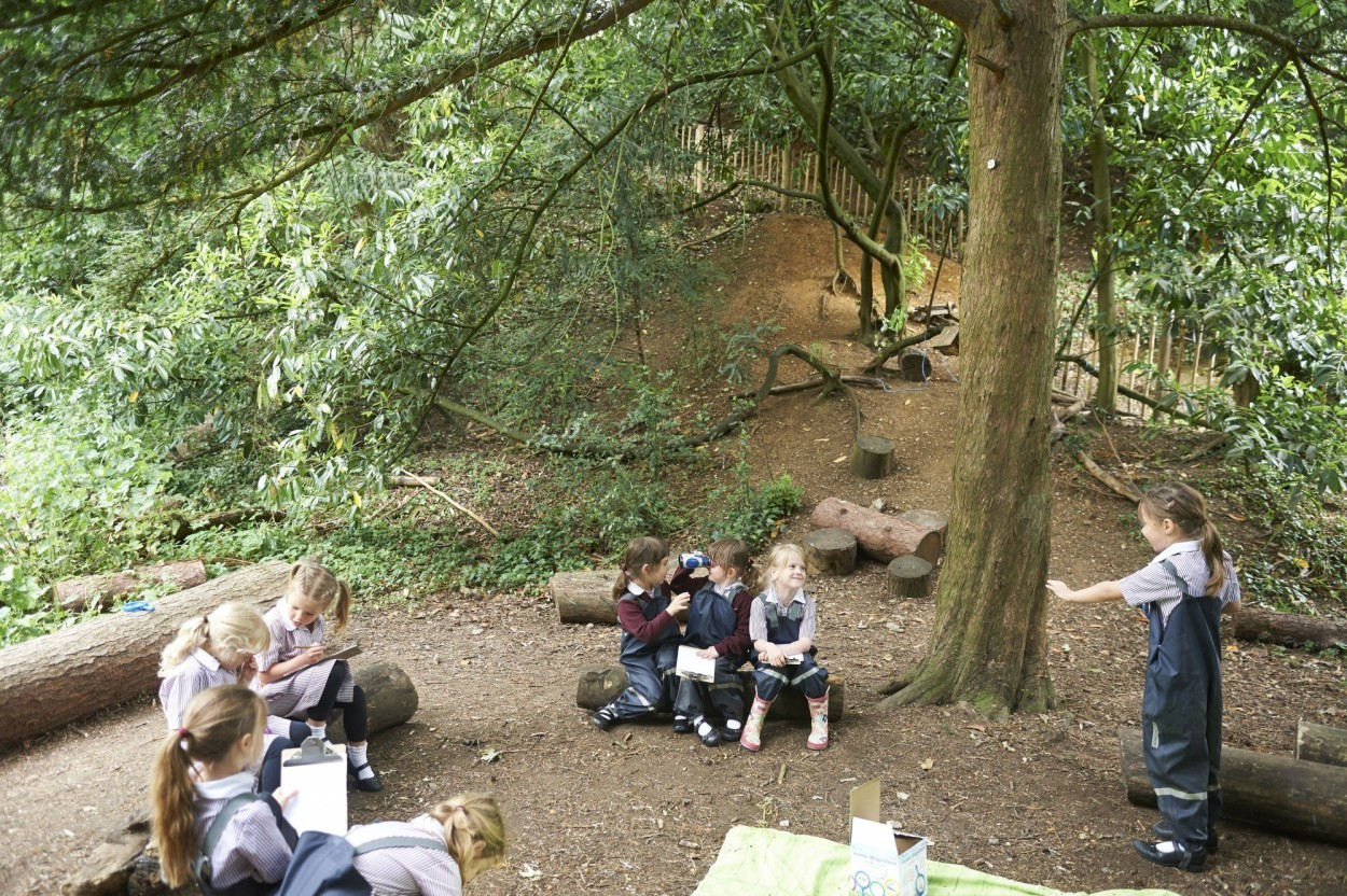 Accredited Forest School